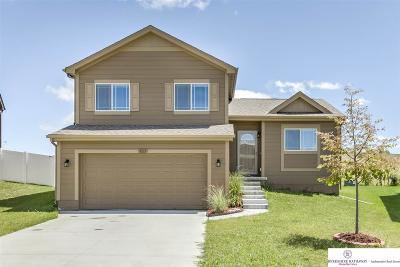 Omaha Single Family Home New: 9113 Summit Street