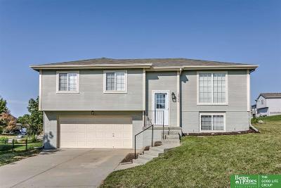 Sarpy County Single Family Home New: 10706 S 19 Street