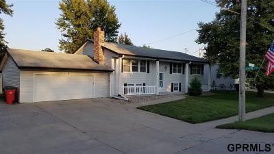 Yutan Single Family Home For Sale: 1002 2nd Street