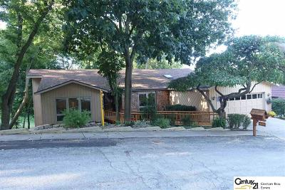 Bellevue Single Family Home For Sale: 905 Ridgewood Court