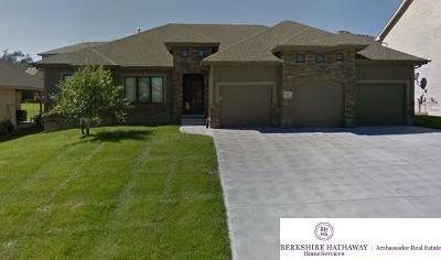La Vista Single Family Home For Sale: 10314 Emiline Street