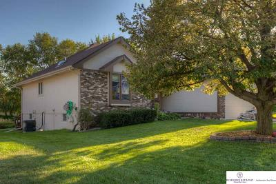 Papillion Single Family Home For Sale: 1909 Skyhawk Avenue