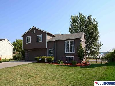 Bellevue Single Family Home For Sale: 10605 S 17th Street