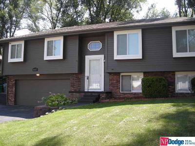 Papillion Single Family Home For Sale: 1117 Overland Trail