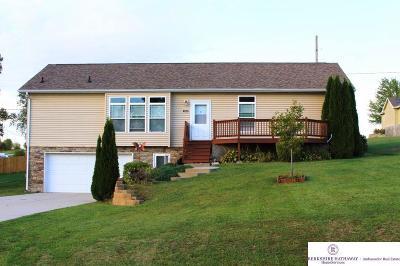 Plattsmouth Single Family Home For Sale: 1802 Dunbar Drive