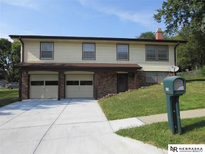 Omaha Condo/Townhouse For Sale: 9736 Fowler Avenue