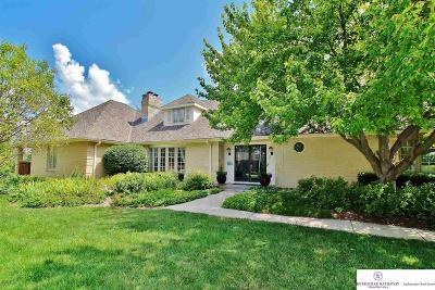 Omaha Single Family Home New: 165 S 216 Circle