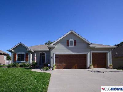 La Vista Single Family Home New: 7923 S 91st Street