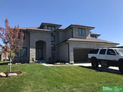 Omaha Single Family Home New: 2111 S 220th Avenue