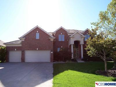 Omaha Single Family Home New: 4209 N 195 Street