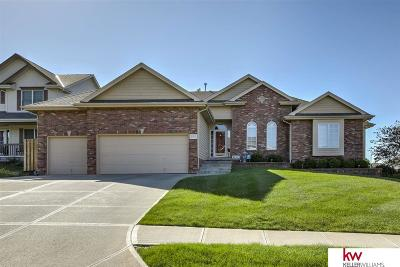 Omaha Single Family Home New: 3904 S 193rd Circle