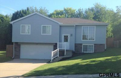Bellevue Single Family Home New: 2102 Yorktown Street