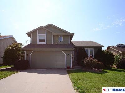 Omaha Single Family Home New: 16627 Weir Street