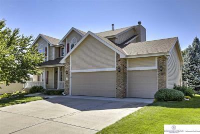 Omaha Single Family Home New: 6122 S 160 Street