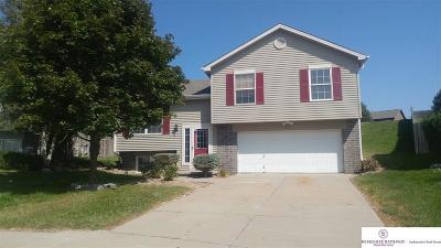 Omaha Single Family Home New: 17610 Chandler Circle