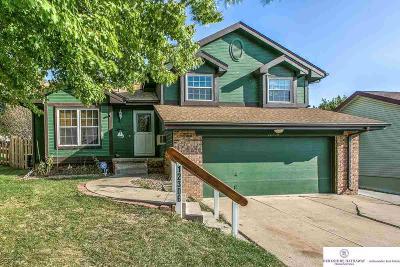 Omaha Single Family Home New: 12306 Binney Street