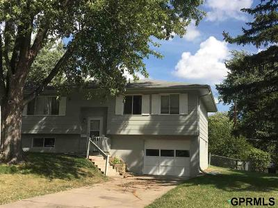 Single Family Home For Sale: 7523 S 75th Street