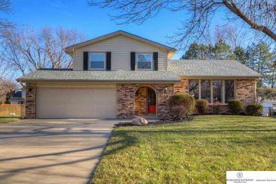 Elkhorn Single Family Home For Sale: 409 S 215 Street