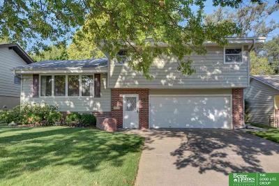 Omaha Single Family Home For Sale: 3010 S 49th Avenue