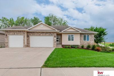 Springfield Single Family Home For Sale: 601 Mulberry Lane