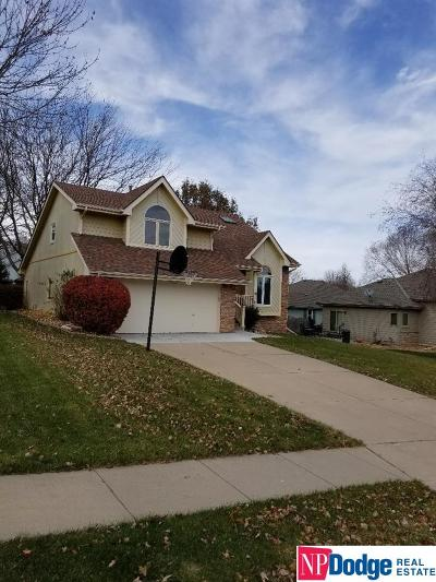 Omaha Single Family Home For Sale: 4360 S 149 Terrace