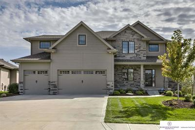 Omaha Single Family Home For Sale: 1209 S 209 Circle