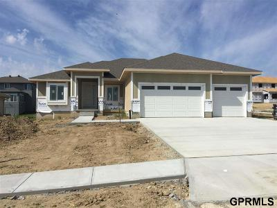 Papillion Single Family Home For Sale: 11704 S 110 Avenue