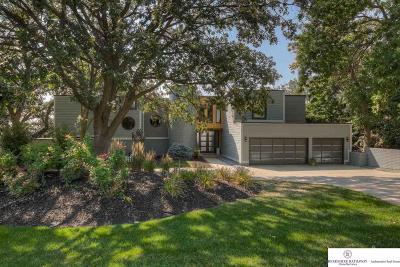Omaha Single Family Home For Sale: 508 Skyline Drive