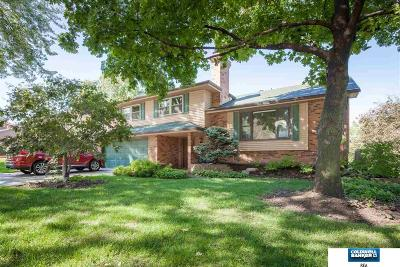 Omaha Single Family Home For Sale: 12228 Deer Hollow Drive