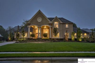Omaha Single Family Home For Sale: 13834 Hamilton Street