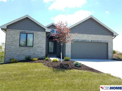 Omaha Single Family Home For Sale: 15440 Norwick Drive