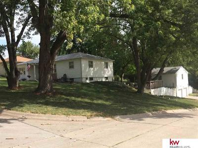 Plattsmouth Single Family Home For Sale: 223 S 13th Street