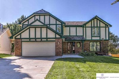 Omaha Single Family Home New: 6214 S 103 Street