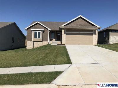 Bellevue Single Family Home New: 2018 Gindy Circle