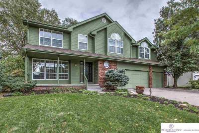 Omaha Single Family Home New: 5901 S 174 Avenue