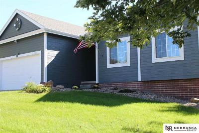 Omaha Single Family Home New: 17623 J Street