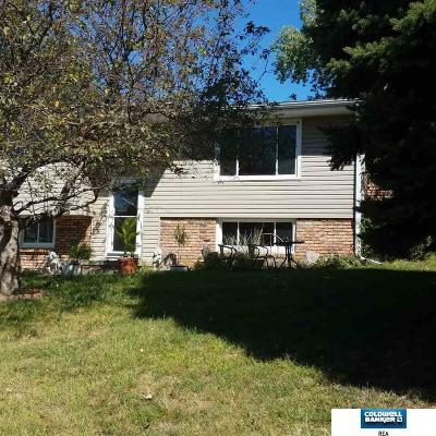 Omaha Single Family Home New: 13806 Yes Circle