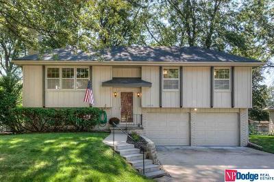 Douglas County Single Family Home New: 13579 Stanford Street