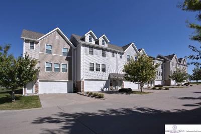 Douglas County Condo/Townhouse New: 18170 Hayes Plaza