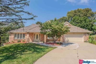 Bellevue Single Family Home For Sale: 908 Ivy Court
