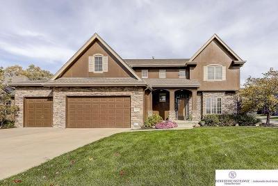 Omaha Single Family Home For Sale: 19506 Jackson Street