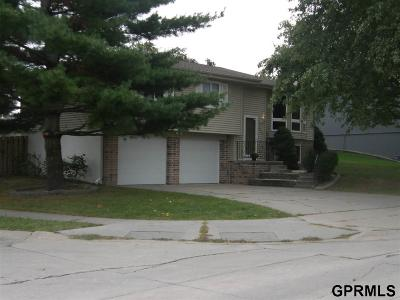 Papillion Single Family Home New: 2009 King Drive