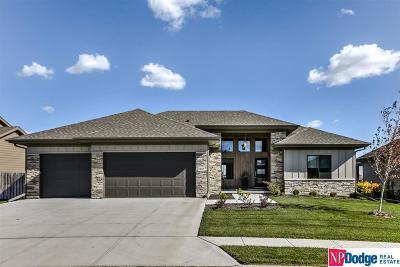 Omaha Single Family Home For Sale: 1405 S 208 Street