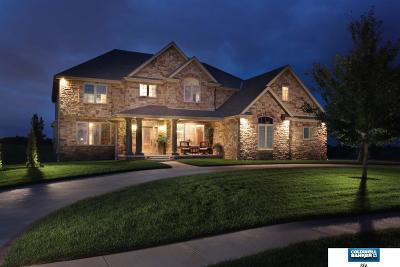 Elkhorn Single Family Home For Sale: 4807 S 235 Street