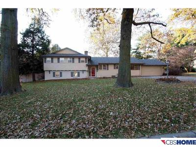 Omaha Single Family Home For Sale: 1230 Pine Road
