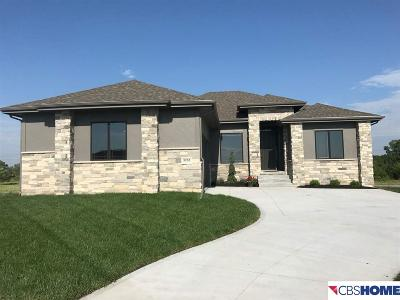 Fremont Single Family Home For Sale: 3237 Ritz Place