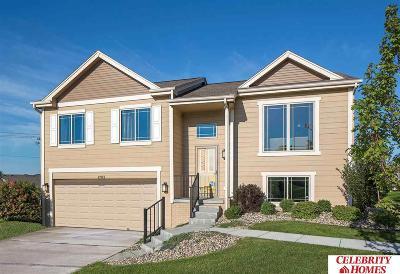 Bennington Single Family Home For Sale: 7959 N 144 Avenue