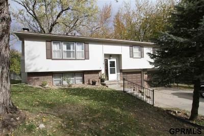 Bellevue Single Family Home For Sale: 3406 Joann Avenue