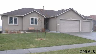 Saunders County Single Family Home For Sale: 1996 N Sycamore Street