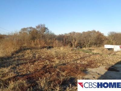 Plattsmouth Residential Lots & Land For Sale: 224 Rock Bluff Road